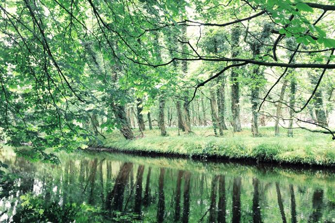 Peaceful River Esk